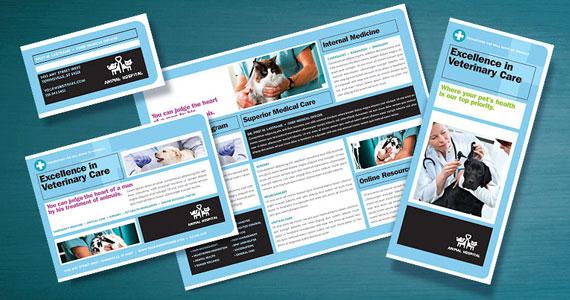 Animal Hospital Brochures, Flyers, Posters