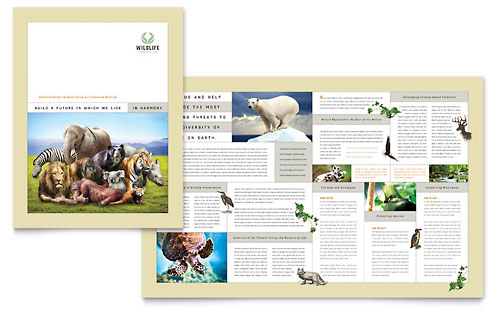 Nature & Wildlife Conservation Brochure Template Design