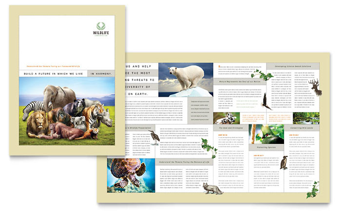 Nature Amp Wildlife Conservation Brochure Template Design