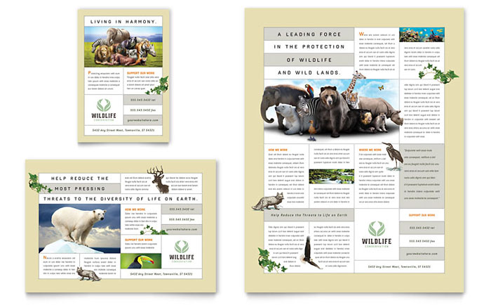 nature  u0026 wildlife conservation flyer  u0026 ad template design