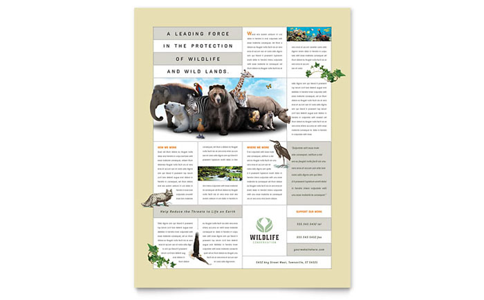 nature  u0026 wildlife conservation flyer template design