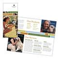 Veterinarian Clinic - Brochure Template Design