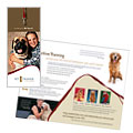 Pet Training & Dog Walking - Brochure Template Design Sample