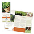 Landscape & Garden Store - Brochure Template Design Sample