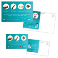 Pest Control Services - Postcard Template Design