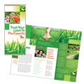 Lawn Maintenance - Tri Fold Brochure Template Design