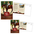 Horse Riding Stables & Camp - Postcard Template Design