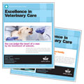 Animal Hospital - Poster Template Design