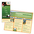 Golf Instructor & Course - Brochure Template Design