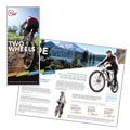 Bike Rentals & Mountain Biking - Tri Fold Brochure Template Design