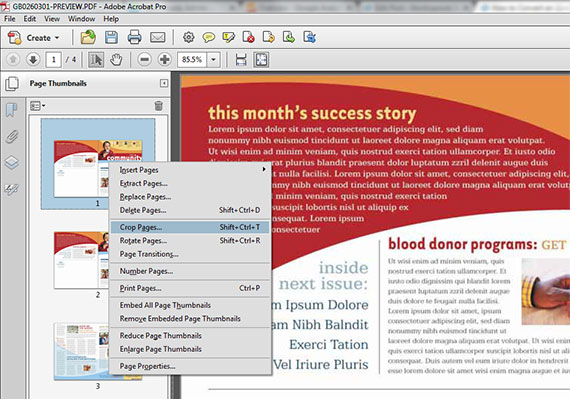 Crop Pages Selection in Acrobat
