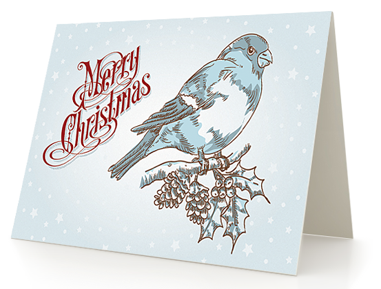 Make A Greeting Card Design, Create Greeting Cards  Online Greeting Card Template