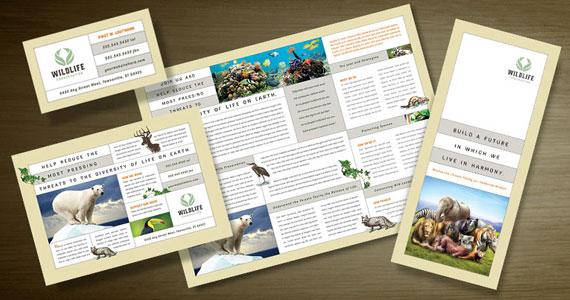 Wildlife Conservation Brochures, Flyers, Postcards