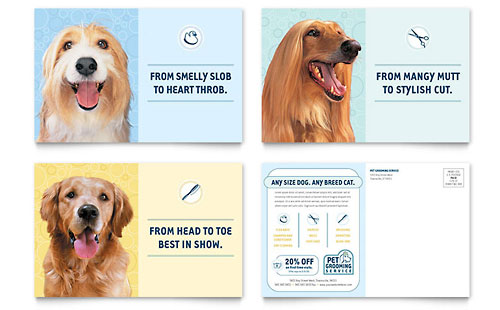 Pet Grooming Service Postcard Template Design