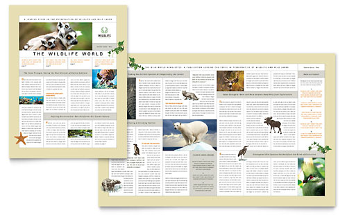 Nature & Wildlife Conservation Newsletter Template Design
