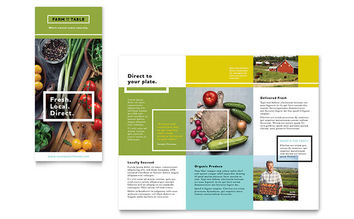 Organic food brochure template design for Product brochure template word