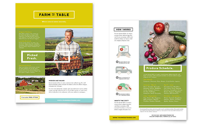 Elegant Organic Food Datasheet · Website Designer Sales Sheet Template