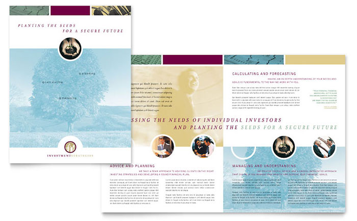 Financial Consulting Brochure Template Design Download - InDesign, Illustrator, Word, Publisher, Pages