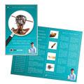 Pest Control Brochure Design