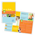 Weight Loss Clinic Brochure Design