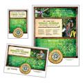 Tree Service Flyer & Ad Design