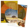 African Safari Brochure Design