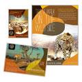 African Safari Flyer & Ad Designs